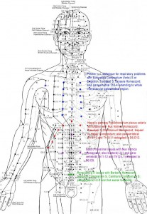 acupuncturechart